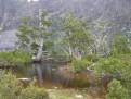 Artists Lake