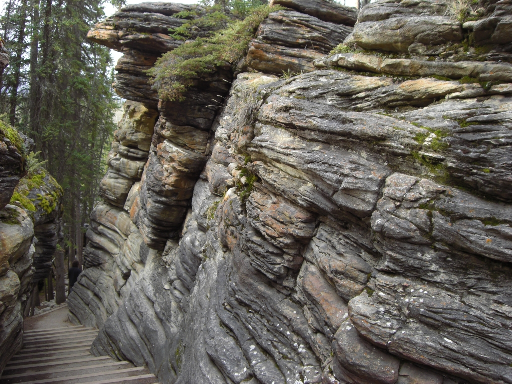 Athabasca Canyon 3