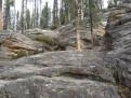 Athabasca Canyon 4