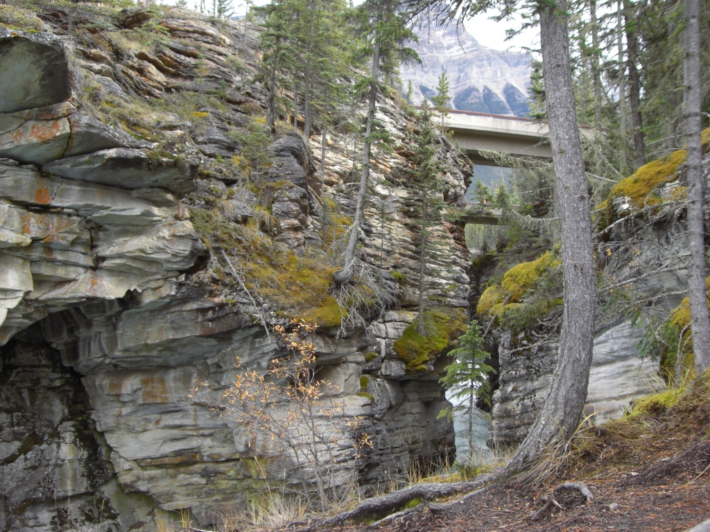 Athabasca Canyon 7