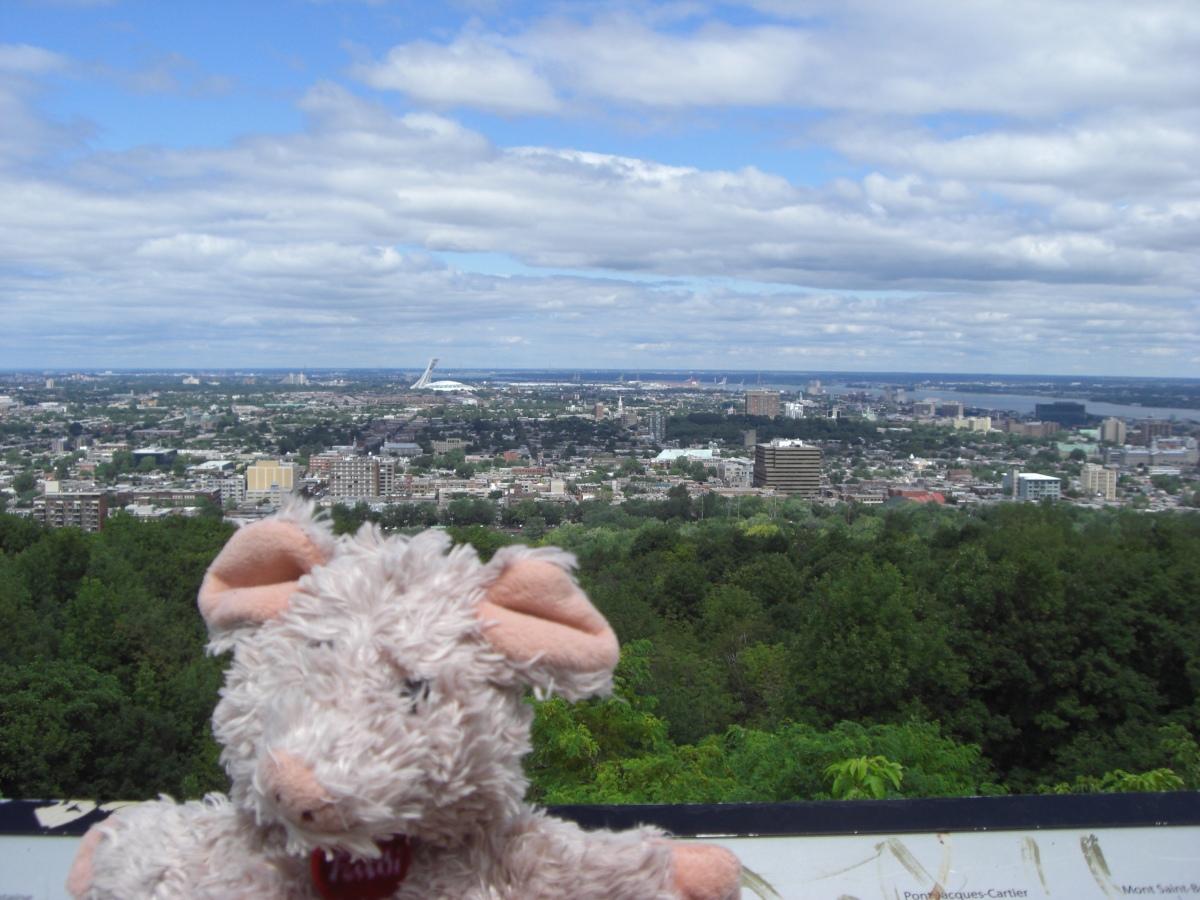 Ausblick 1: Vom Mont Royal auf das Olympic Stadium