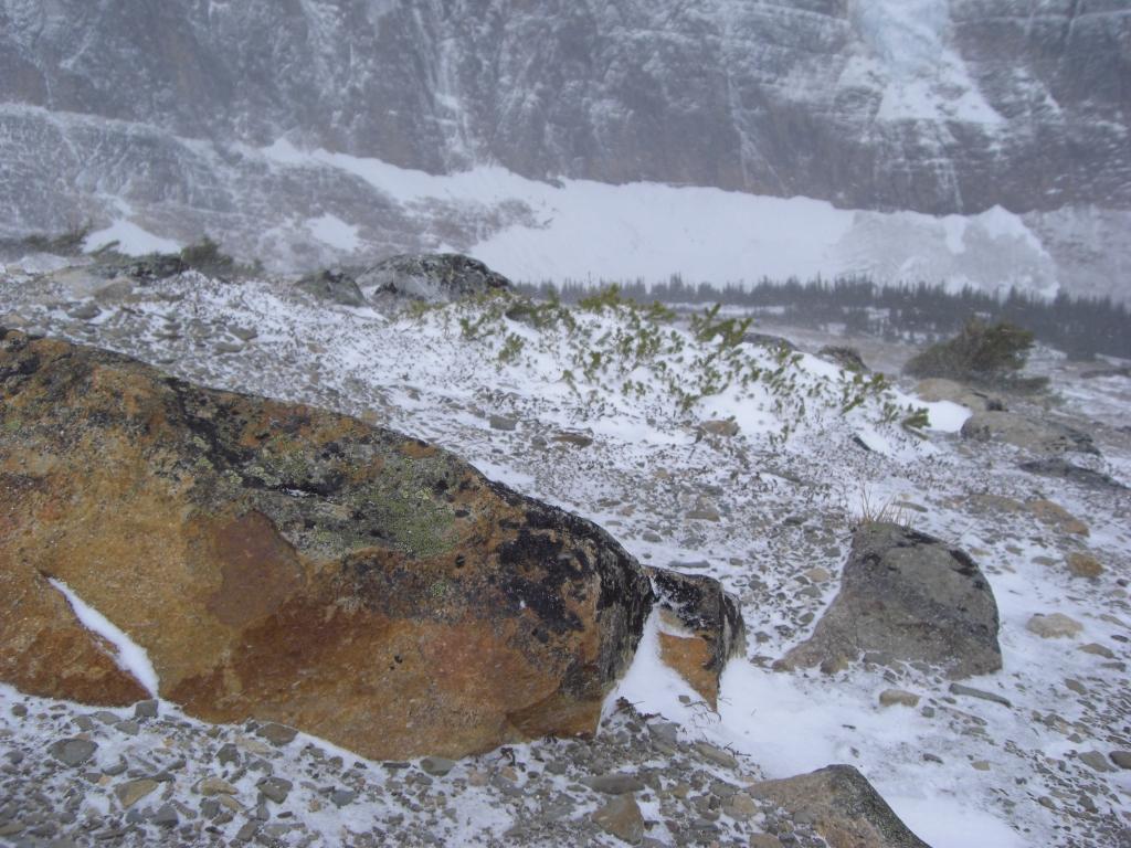 Aussicht vom Mt Edith Cavell 2