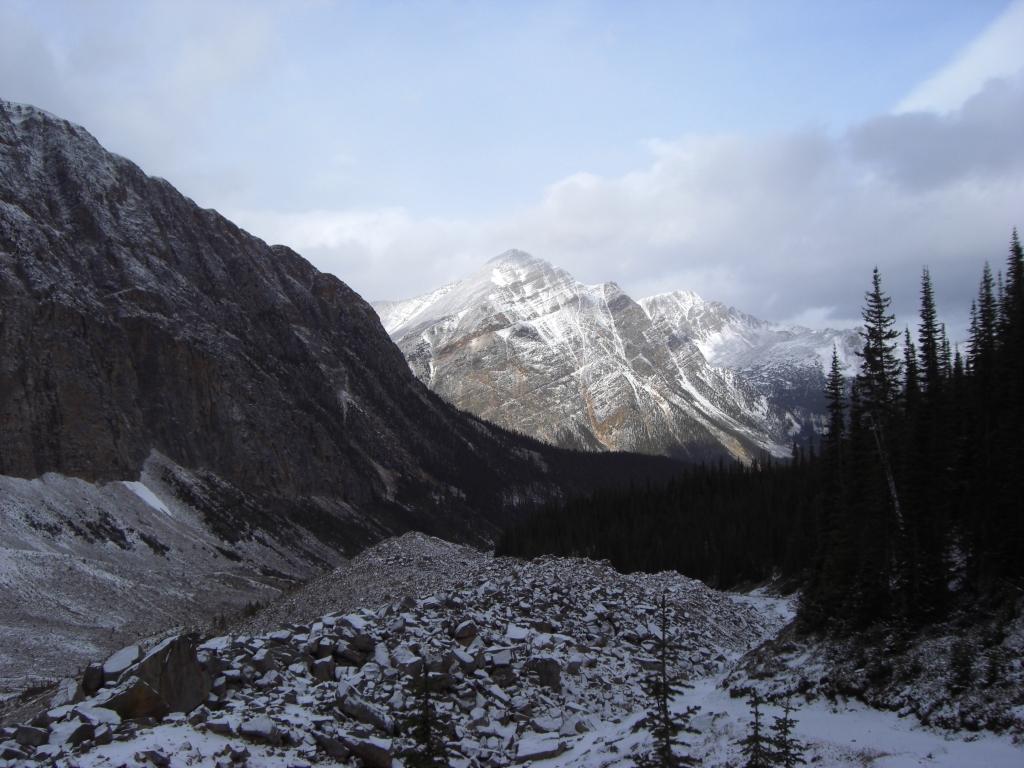 Aussicht vom Mt Edith Cavell