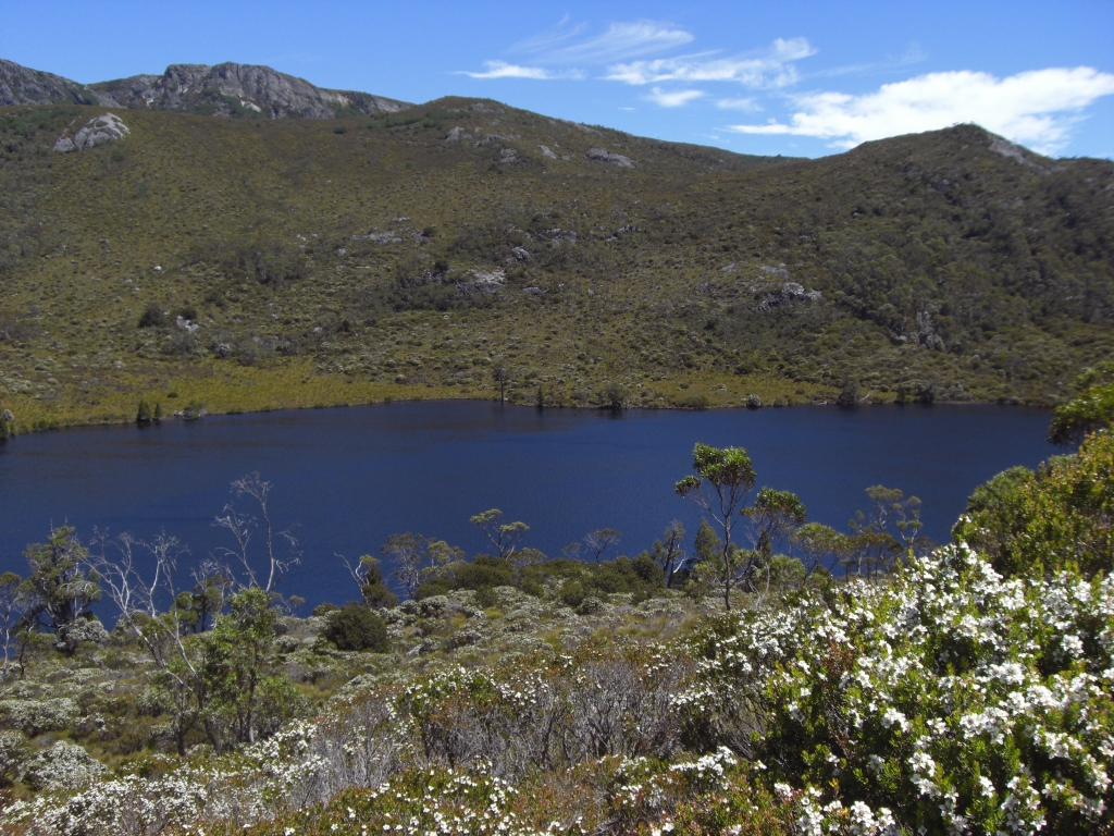 Cradle Mountain National Park 1