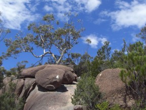 Freycinet National Park 4