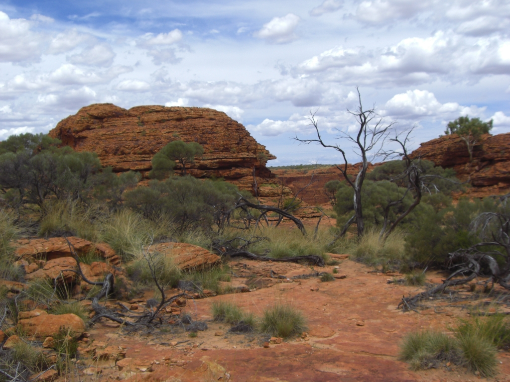 Kings Canyon 4