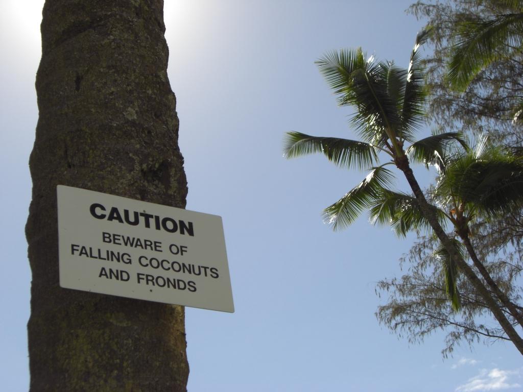 Neue Gefahren