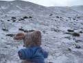 Trudi im Schneesturm
