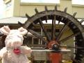 Trudi in front of the water wheel in Windsor