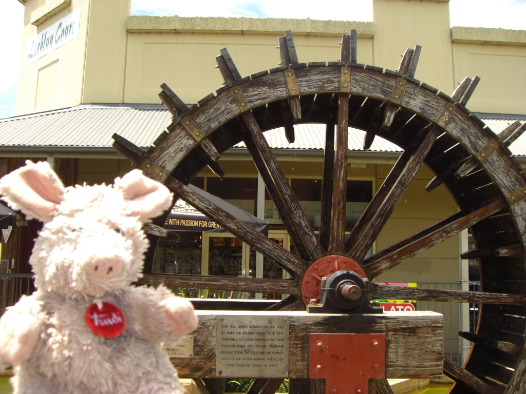 Trudi in front of the water wheel in Windsor