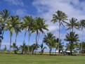 Typisch Hawaii 2