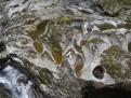 Wasser hölt Stein aus