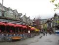 Whistler im Regen 2