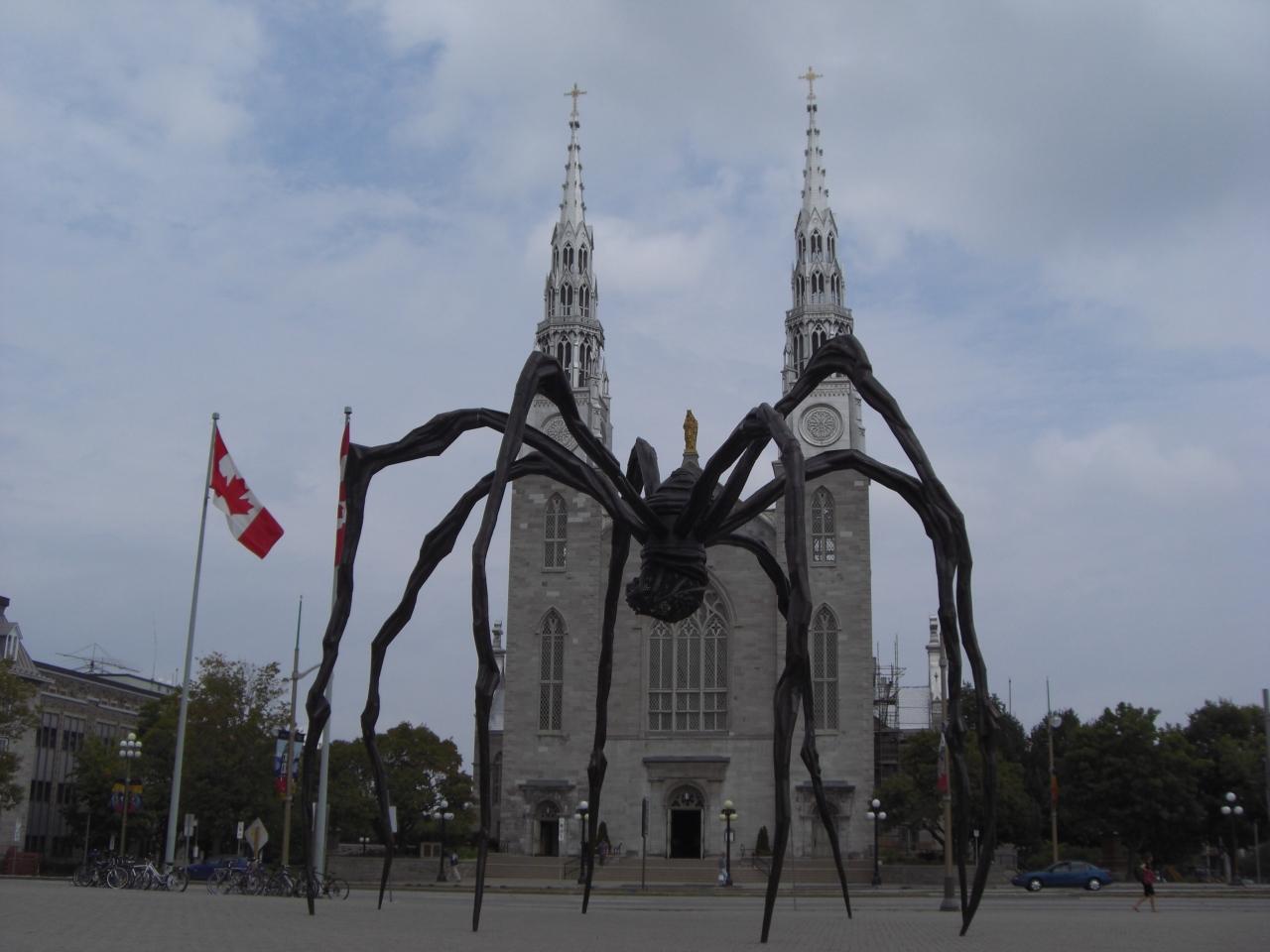Spinne - und ich dachte, die wäre in London